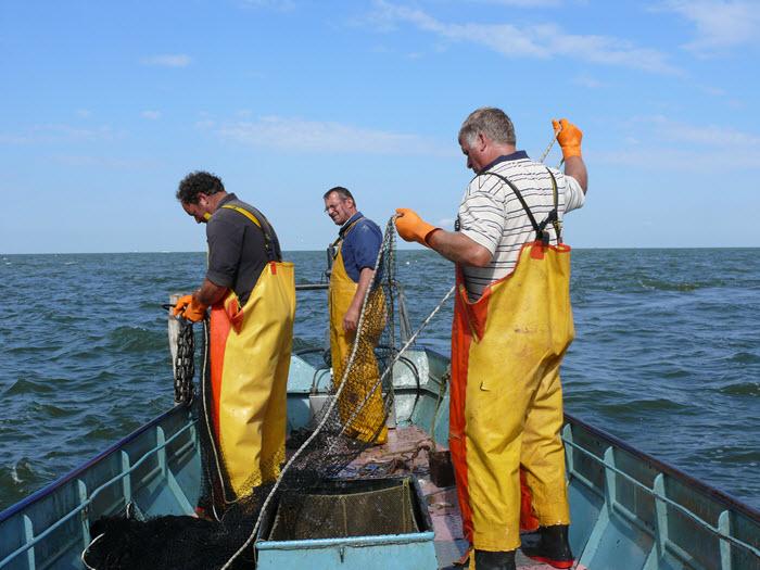 Lezing visserij Harderwijk