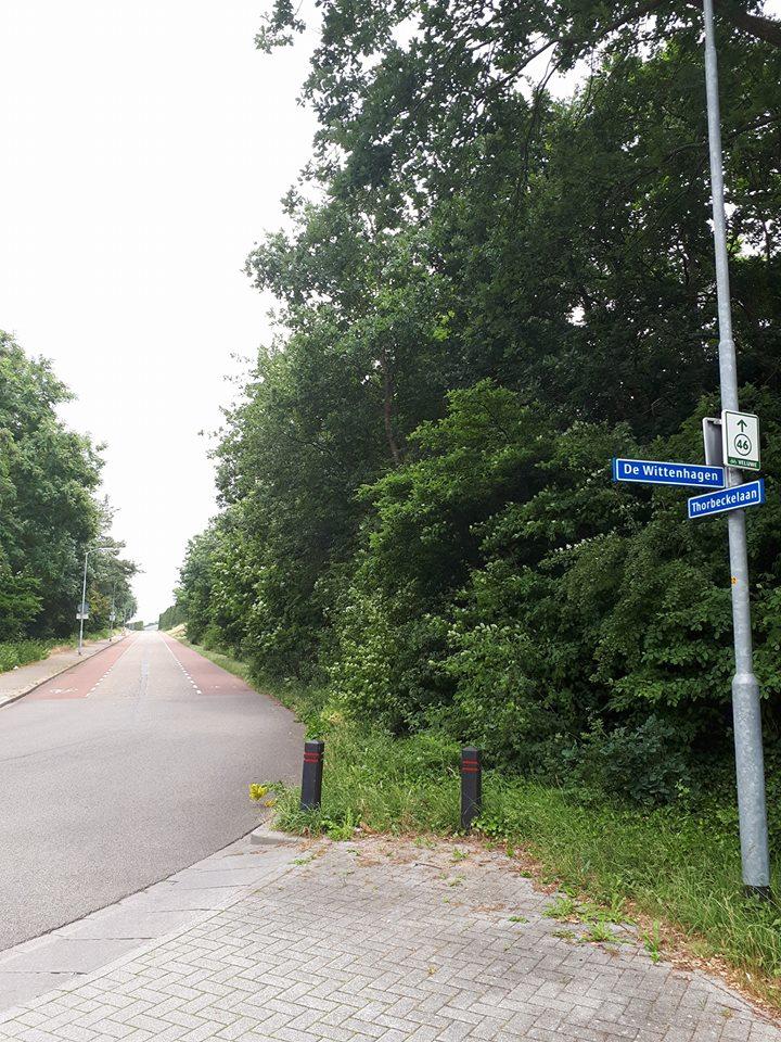 De Wittenhagen Harderwijk