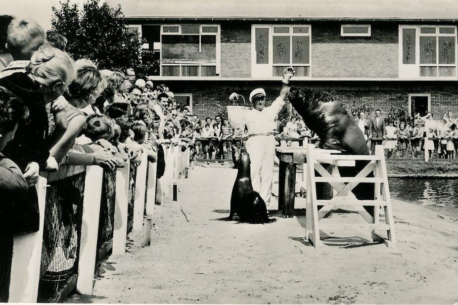 1965 - Dolfinarium Harderwijk gaat open