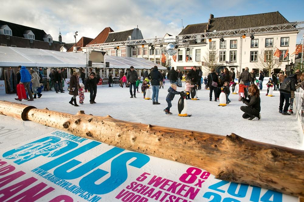 GEZOCHT voor Harderwijk op IJs; IJskoningen, IJsprinsen en IJsvrienden!