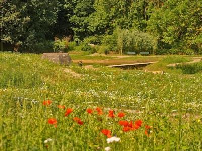 Lezing Groei & Bloei, De Natuurtuin van Harderwijk