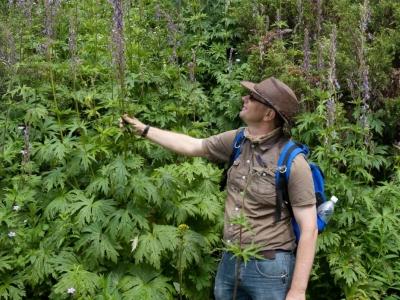 Lezing Groei & Bloei, Waar komen onze tuinplanten vandaan?