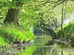 Harderwijk koopt ruzie met Natuurmonumenten af