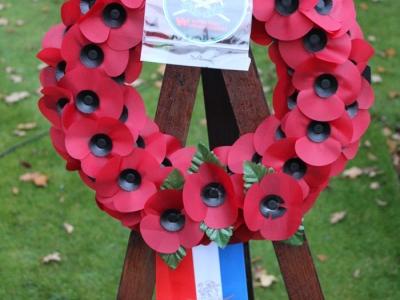 Remembrance - Poppy Day