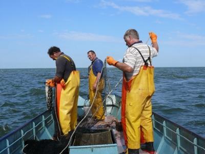 Veel belangstelling voor lezing over visserij...