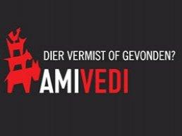 Gevonden en vermiste huisdieren in Harderwijk