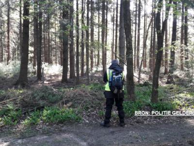 Politie vindt lichaam in bos bij Nunspeet.