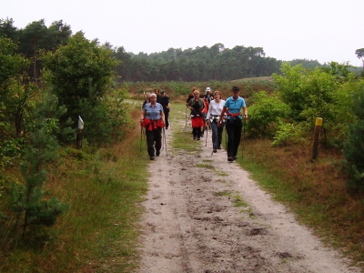 Beginnerscursus nordic walking start weer