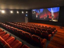 Peuter- en kleuterbios met de film: De fabeltjeskrant en de grote dierenbos-spelen