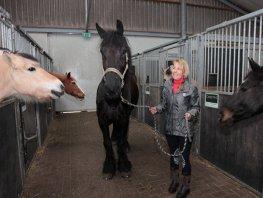 Vacature instructeur/instructrice met passie voor paarden en kinderen
