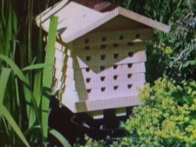Bijenkasten vernield in park Walstein