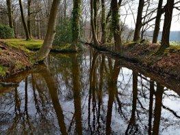 Wandelen langs water op landgoed Staverden