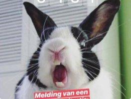 Inbreker in Harderwijk blijkt buurvrouw die konijn kwijt is