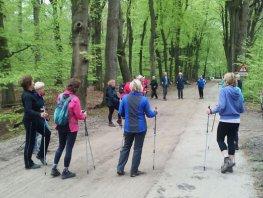 Starterscursus Nordic Walking