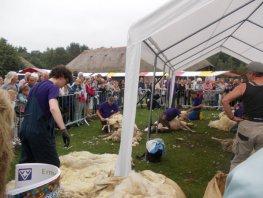 Schaapscheerdersfeest met muziek, wolkramen, klimparcours en Rad van Fortuin