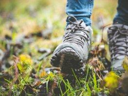 Stevig stukje stappen over landgoed Staverden