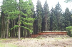Wildarena de Witte Hoogt in het Speulderbos