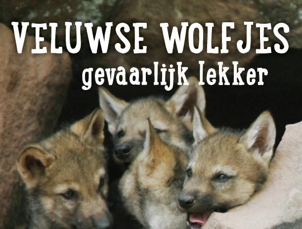 Veluwse Wolfjes gevaarlijk lekker!