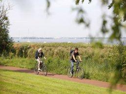 Milieuvriendelijke onkruidbestrijding in Harderwijk