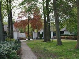 Vrouw (66) uit Harderwijk opgepakt voor het vernielen en wegnemen van planten op de begraafplaats
