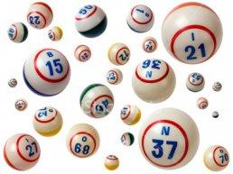 Bingo Wijkvereniging Stadsdennen en Frankrijk