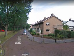 Harderwijk Anders: 'Behoud de bomen aan de Randweg'