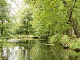Heide- en boswandeling landgoed Staverden