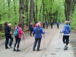 Cursus Nordic Walking