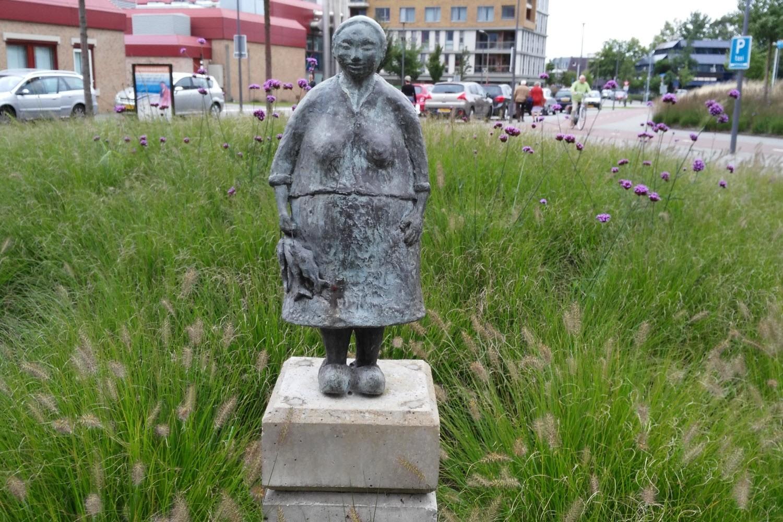 Vrouwtje van het st Jansdal